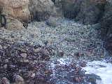 20.01.39exposed_boulders_ii